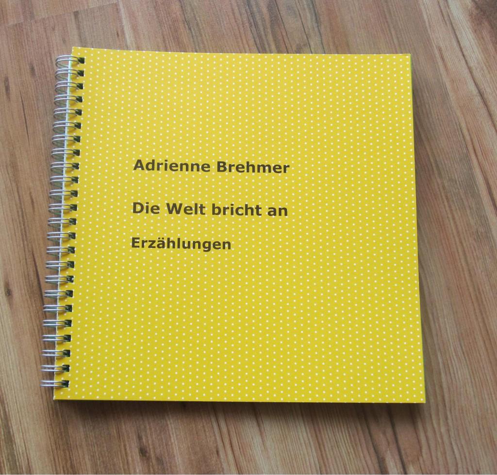 Adrienne Brehmer - Die Welt bricht an